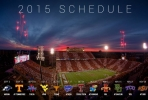 2015 - National Football League Scores & Schedule