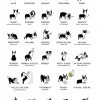 Dogie Languages