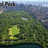 How big is Central Park?