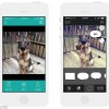Instagram for DOGS: Barcam app helps take the perfect picture of your pooch