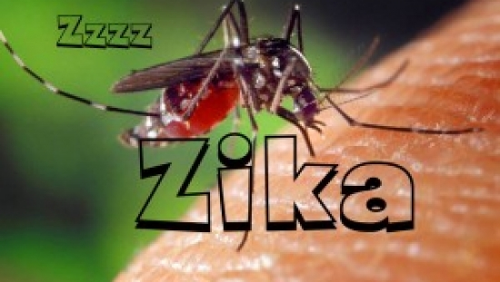 Short Answers to Hard Questions About Zika Virus